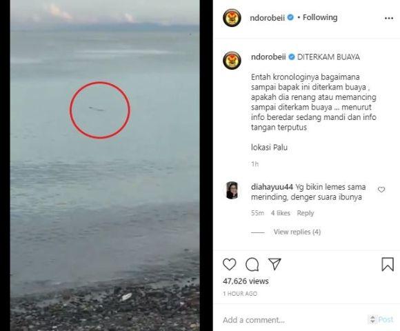 21078-video-penyelamatan-bapak-digigit-buaya-di-pantai-palu