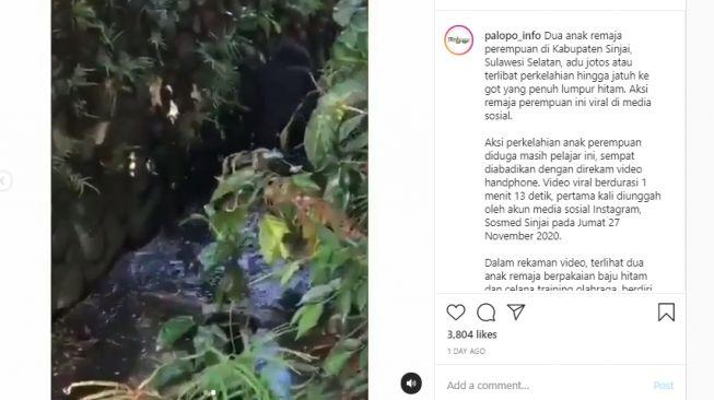 Viral..Video Dua Remaja Putri Adu Jotos Lanjut Sampai Kecebur Got, Lihat Videonya