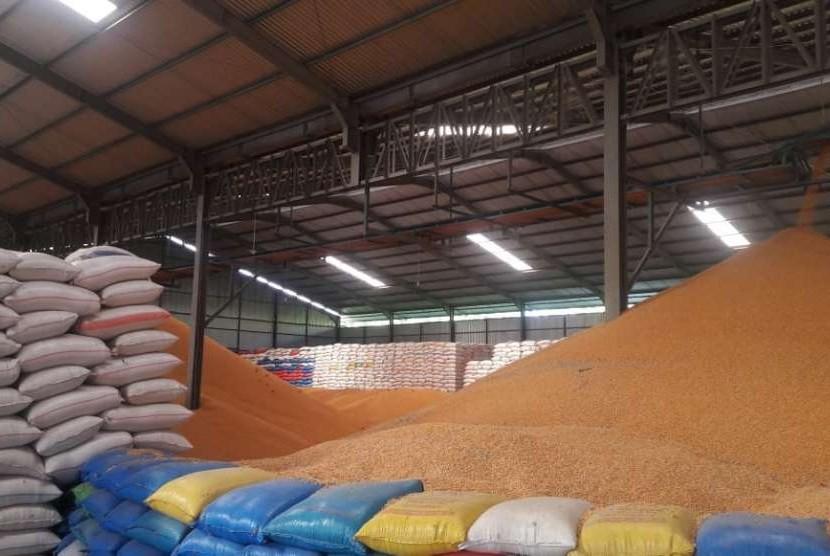 Kadis PTPH : Pemprov Sulsel Bangun Pabrik Benih Jagung Berkapasitas 1.000 Ton